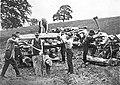 Woodchopping at Scheyville (2589025686).jpg