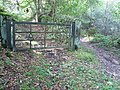 Woodland Gate - geograph.org.uk - 571562.jpg
