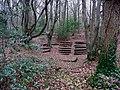 Woodland theatre - geograph.org.uk - 106700.jpg