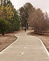 Woodley Ave bike path.jpg