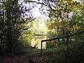 Wyndham's Pond on Yateley Common - geograph.org.uk - 653393.jpg
