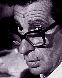 Egyptian film director