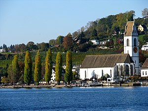 Meilen - Meilen church and wine yards