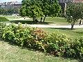 Zagreb Tomislav square00417.JPG