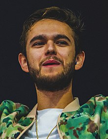 Zedd at Veld 2017 (cropped).jpg