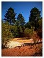 Zeer impressionante kleuren, eigenlijk de restanten van okerwinning. Men noemt het Colorado nu. - panoramio.jpg