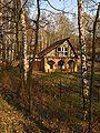 Zielona-Pogoria 11.04.2009 r 63.jpg