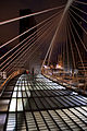 Zubizuri bridge Night 1 (3820019615).jpg