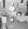 Zuivelfabriek Tnuva. Pakjes boter worden voor verzending in kartonnen dozen verp, Bestanddeelnr 255-4435.jpg