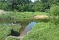 """""""Mokra"""" przeprawa przez Widawe - nucek - panoramio.jpg"""
