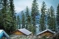 '10 poor shot, bigalow cabins - panoramio.jpg
