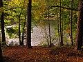 (PL) Polska - Warmia - Ścieżka nad jeziorem Długim w Lesie Miejskim w Olsztynie - Path on the Long Lake in the City Forest in Olsztyn (9.X.2012) - panoramio (21).jpg