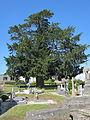 Église Notre-Dame de Subligny, Manche - If.JPG