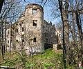 Świny, Zamek Świny - fotopolska.eu (102148).jpg