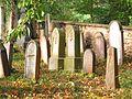 Židovský hřbitov v Trhovém Śtěpánově 4.jpg