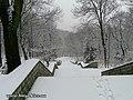 Біля Аскольдової могили - panoramio (2).jpg