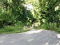 Дорога в центр - panoramio (15).jpg