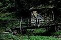 Западна Стара Планина и Предбалкан - ЗЗ по директивата за местообитанията – ZZ1040 – Екопътека Под Камико, с. Бов - No14.jpg