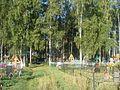 За храмом - panoramio.jpg