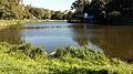 """Кафе на озері №2 у парку """"Нивки"""".jpg"""