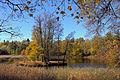 Осенний парк Ораниенбаума.jpg