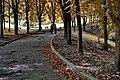 Осінь на Володимирський гірці.jpg