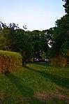 Парк имени Горького в Москве. Фото 17.jpg