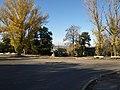 Перекрёсток 19-й линии и улицы Сороки - panoramio.jpg