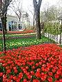 Скверы Душанбе 3.jpg