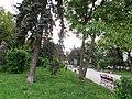 Сквер Чорновола. м. Тернопіль.jpg