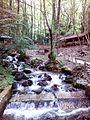 Смоларски водопад 26.jpg
