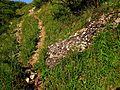 Спуститься к водопаду и подняться от него, с дна ущелья - наверх, - можно по таким тропкам - panoramio.jpg