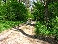 Територія проектованого заказника Чернечий ліс у 2007 році (2).jpg