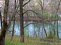 Черное озеро.Гатчина 03.jpg