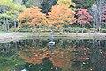 優雅に - panoramio.jpg