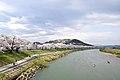 白石川さくら歩道橋からの眺望 View from Sakura Footbridge over Shiroishi River(42205235565).jpg