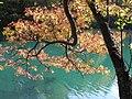 紅葉のオンネトー(Autumn in Onneto) - panoramio.jpg