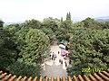 金殿 - panoramio - hilloo (1).jpg