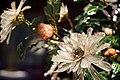 铜镀金镶嵌料石累丝长方盆玉石菊花盆景细节2.jpg