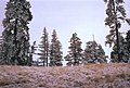 00-16-08, snow on kaiak butte - panoramio.jpg