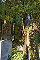 010 - Wien Zentralfriedhof 2015 (22864431949).jpg