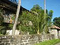 01155jfPoblacion Old Houses San Vicente San Miguel Bulacan Bulacanfvf 07.jpg