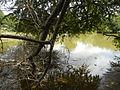 07834jfPampanga River banks Candelaria Welcome Calumpit Bulacan Roadsfvf 04.JPG
