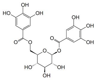 1,6-Digalloyl glucose - Image: 1,6 digalloyl glucose
