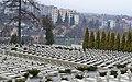 1.Личаківське кладовище Військовий меморіал.JPG