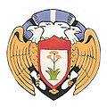 100thbombgroup-emblem.jpg