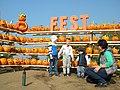 15. Bucharest, Romania. Pumpkin Fest. Primul Festival de Halloween din Romania. Oct. 2019 (capatane de dovleci si copii).jpg