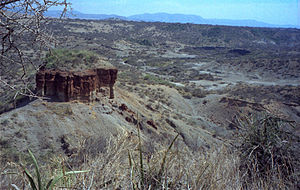 African archaeology - Olduvai Gorge, where some of the earliest hominins are believed to have evolved.