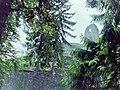 1998 Farnsburg Aug 08.JPG