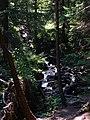 2008 08 15 - 2632 - Hoverla (4106336115).jpg